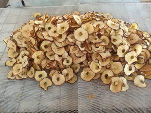 قیمت خرید و فروش میوه خشک