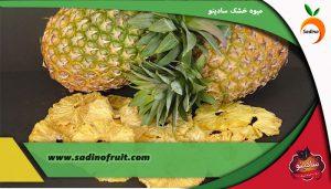 خرید عمده آناناس خشک